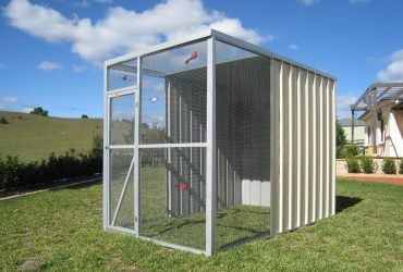 aviaries & dog kennels by shed quarters