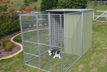 aviaries & dog kennels